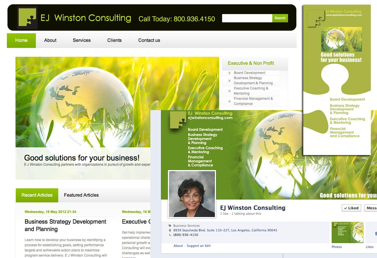 Branding: WordPress Website, Facebook Page, Brochure for Business Coach