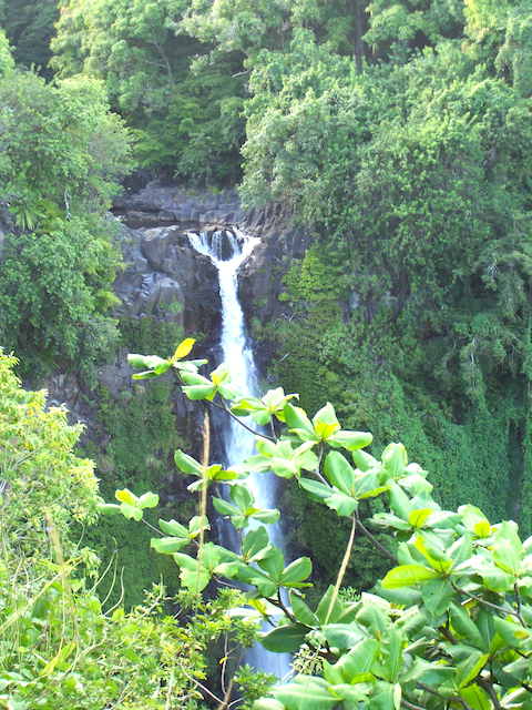 Janet Gervers Photograph, Maui Waterfall 2007