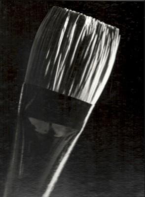 Janet-Gervers Photography, Paintbrush, 4x5 format Photography 1985