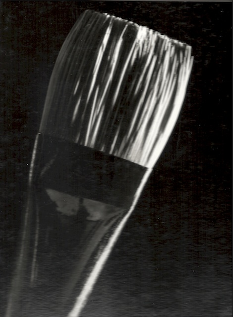Janet-Gervers Photography, Paintbrush, 4x5 format Photography 1985